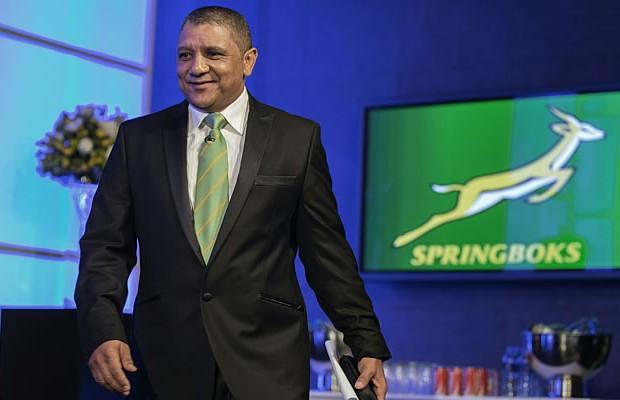 Allister Coetzee is the new Springbok coach