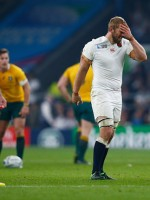 O'Shea : Don't write off Robshaw for England captain
