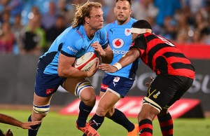 Jacques du Plessis on the charge for the Blue Bulls