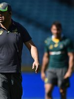Cheika : Wallabies just as hungry for Bledisloe Cup