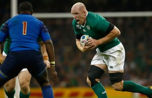 Paul O'Connell looks set to miss the first year of rugby with Toulon