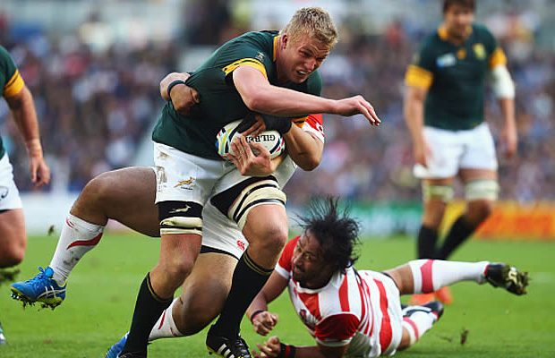 Pieter-Steph du Toit has been given the all clear to return to training