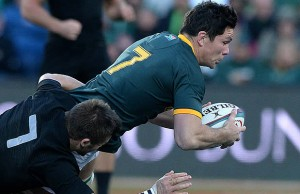 Francois Louw is staying with Bath until 2019