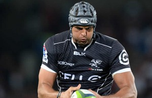 Marco Wentzel returns to captain the Sharks