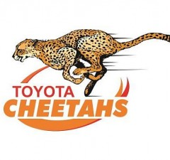 The Cheetahs have a new Logo for 2016
