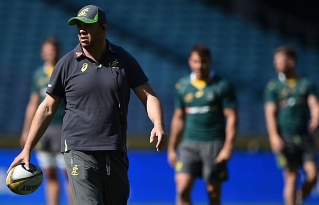 Michael Cheika says the Wallabies want the Bledisloe Cup as much as the All Blacks